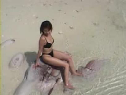 Haruka_igawa___black_bikini1avi_000